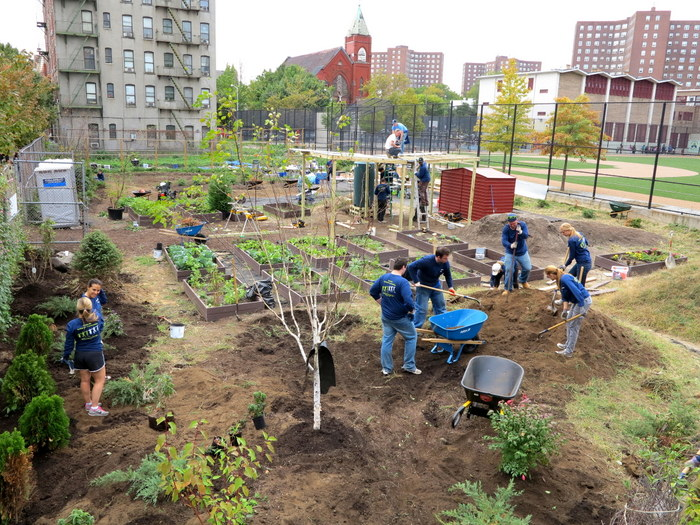 Members Of The Community And Students From The Adjacent PS/MS 29 Elementary  And Middle Schools Work In The Garden.