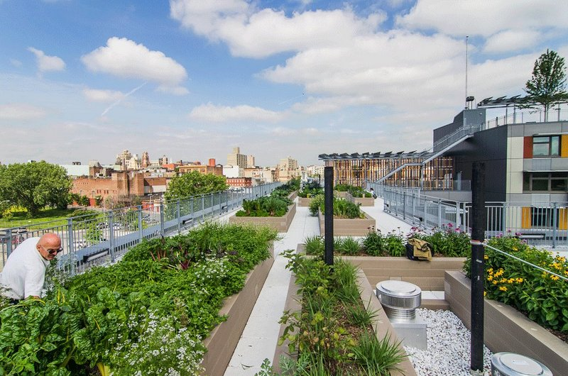 Via Verde Rooftop Garden Grownyc