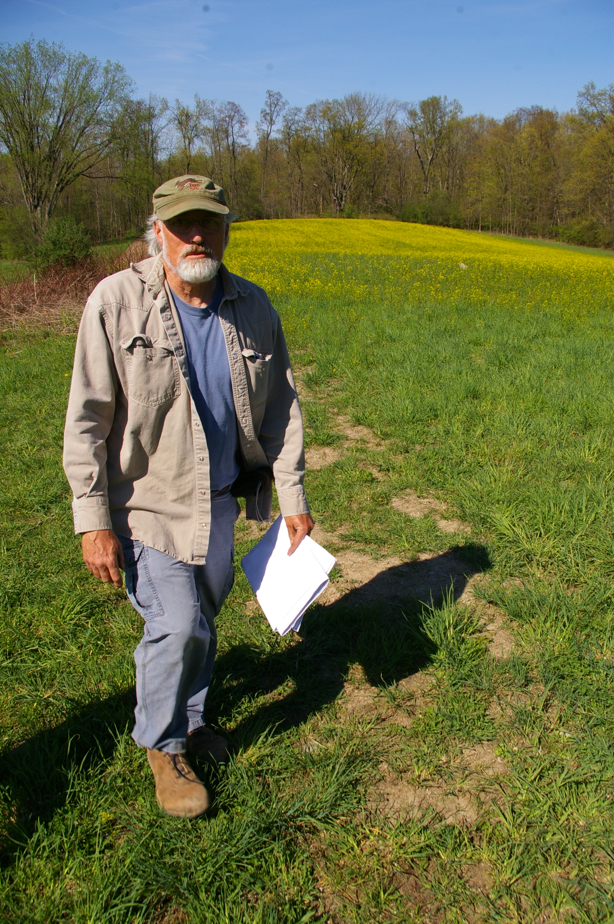 cover crops grownyc