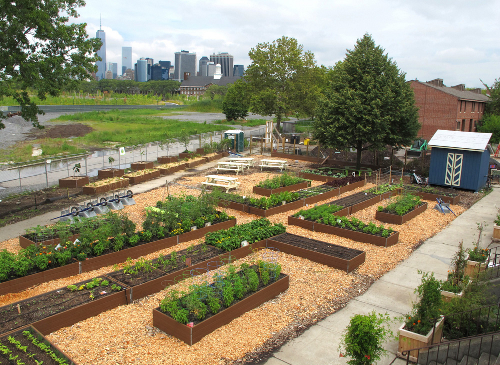governors island teaching garden grownyc