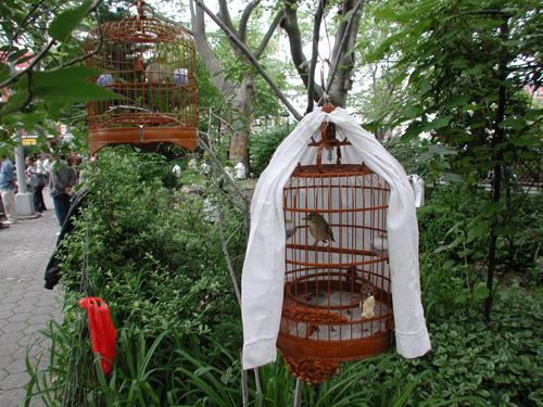 Forsyth Garden Conservancy Grownyc