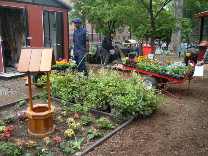 GrowNYC's Annual Spring Plant Sale | GrowNYC